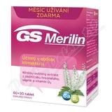 GS Merilin tbl. 60+30 2017
