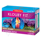 TEREZIA Klouby fit cps. 60