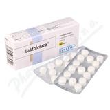 Laktoleraza tbl. 60 Generica