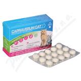 Capraverum Cat probioticum-prebioticum tbl. 30