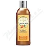 Biotter šampon s organic. rakytníkovým olejem 250ml