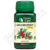 VitaHarmony Giga Brusinky 7. 700 mg tbl. 60